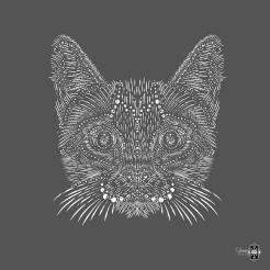 Cat-Detail